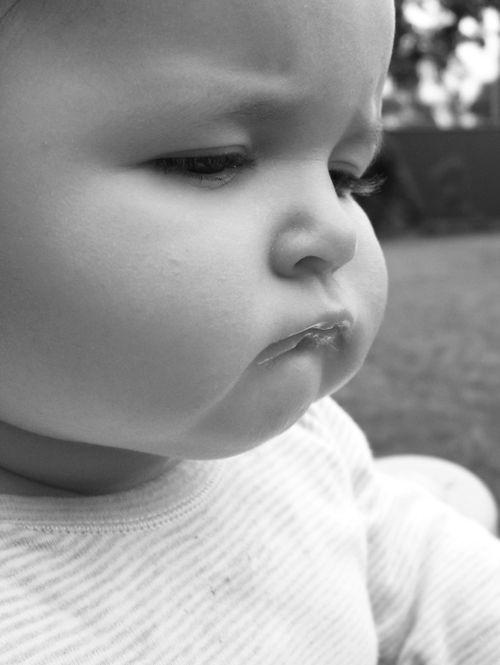 Charlee chubby cheeks 25w