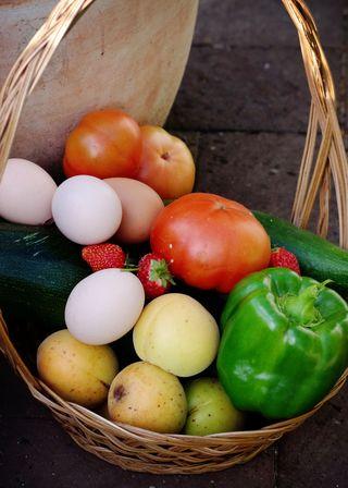 Garden harvest 27jan2011 web