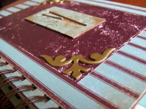 Vivis_diary